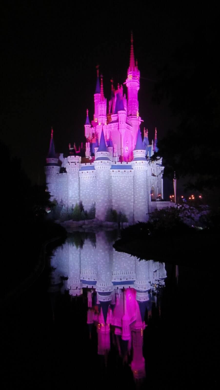 My Walt Disney World Bucket List, By Mommy Frog