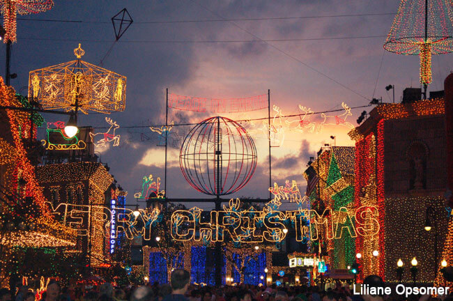 Celebrating the Season: Disney's Hollywood Studios, Animal Kingdom & the Rest of the World