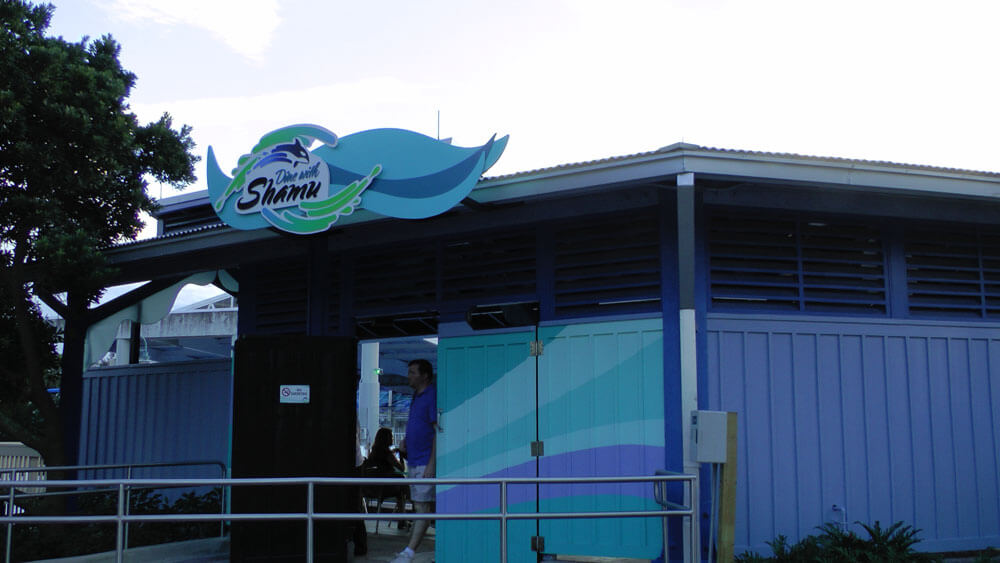 5 Reasons to Dine with Shamu at SeaWorld Orlando