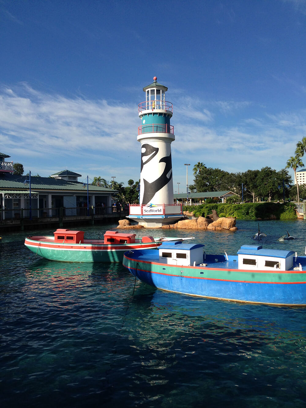 Our Favorite SeaWorld Orlando Rides