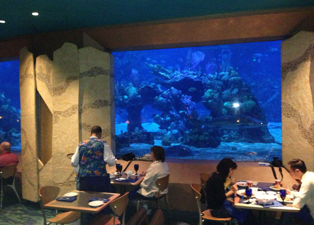 10 Advanced Dining Reservations Worth Making for Your Family - Coral Reef
