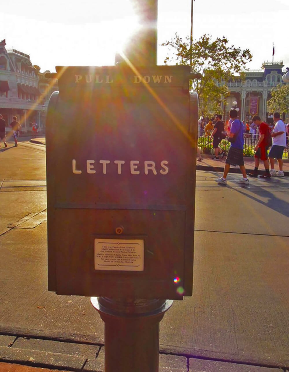 Top 10 Disney World Character Autograph Ideas- Letter Drop Off