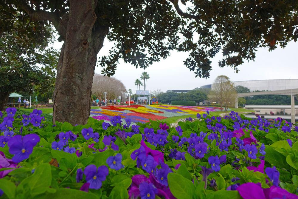 Tips for Enjoying Disney World in Spring!