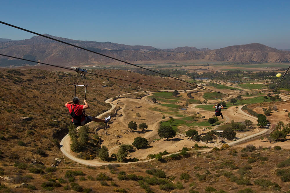 What to do in San Diego - Zoo and Safari Park