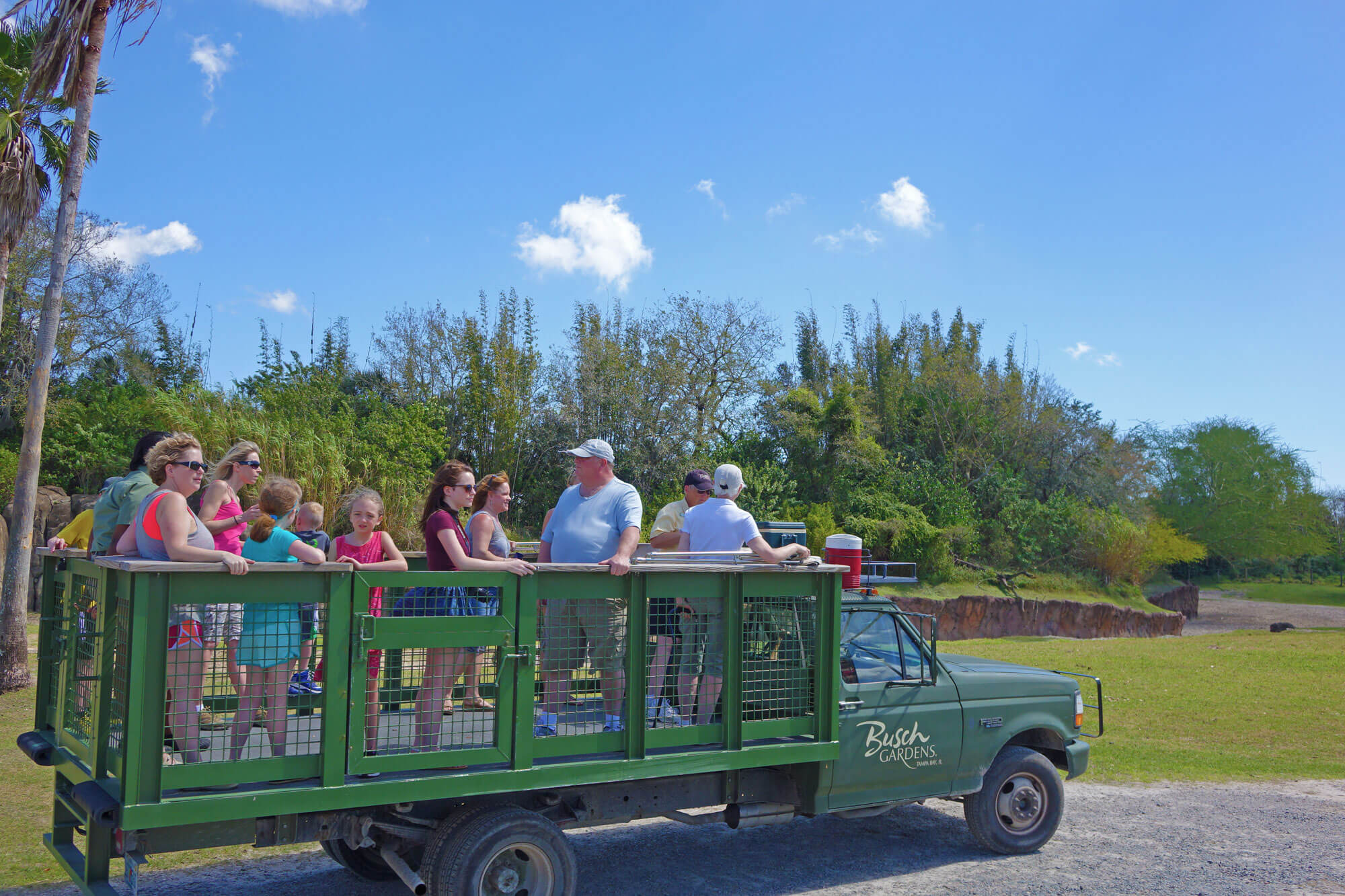 Why We Love Busch Gardens Serengeti Safari Experience