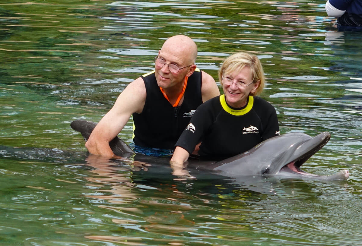 Discovery Cove - Dolphin pic