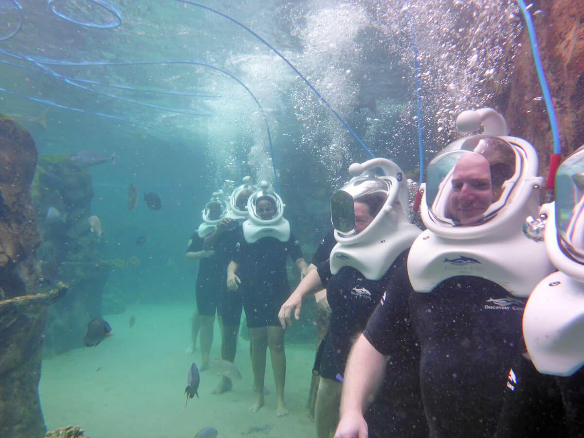 Discovery Cove - Sea Venture