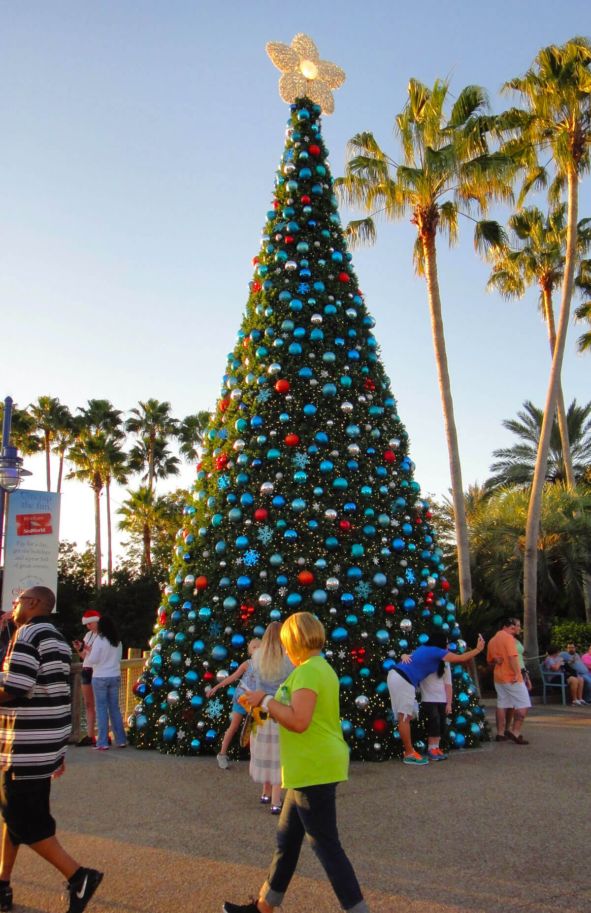 SeaWorld Orlando Christmas Celebration 2015