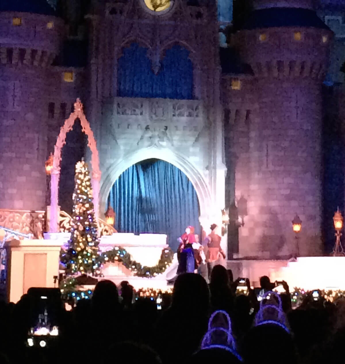 Disney World Frozen Holiday - A Frozen Holiday Wish