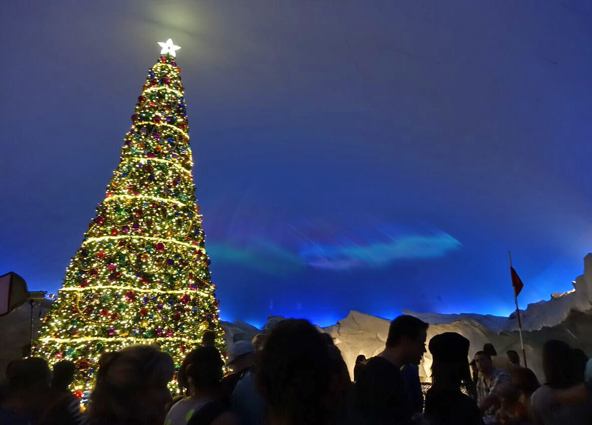 What to Expect at This Year's SeaWorld Orlando's Christmas Celebration