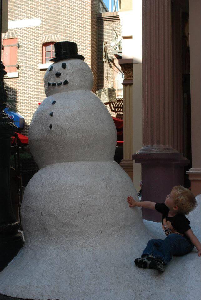 Disney World in Winter