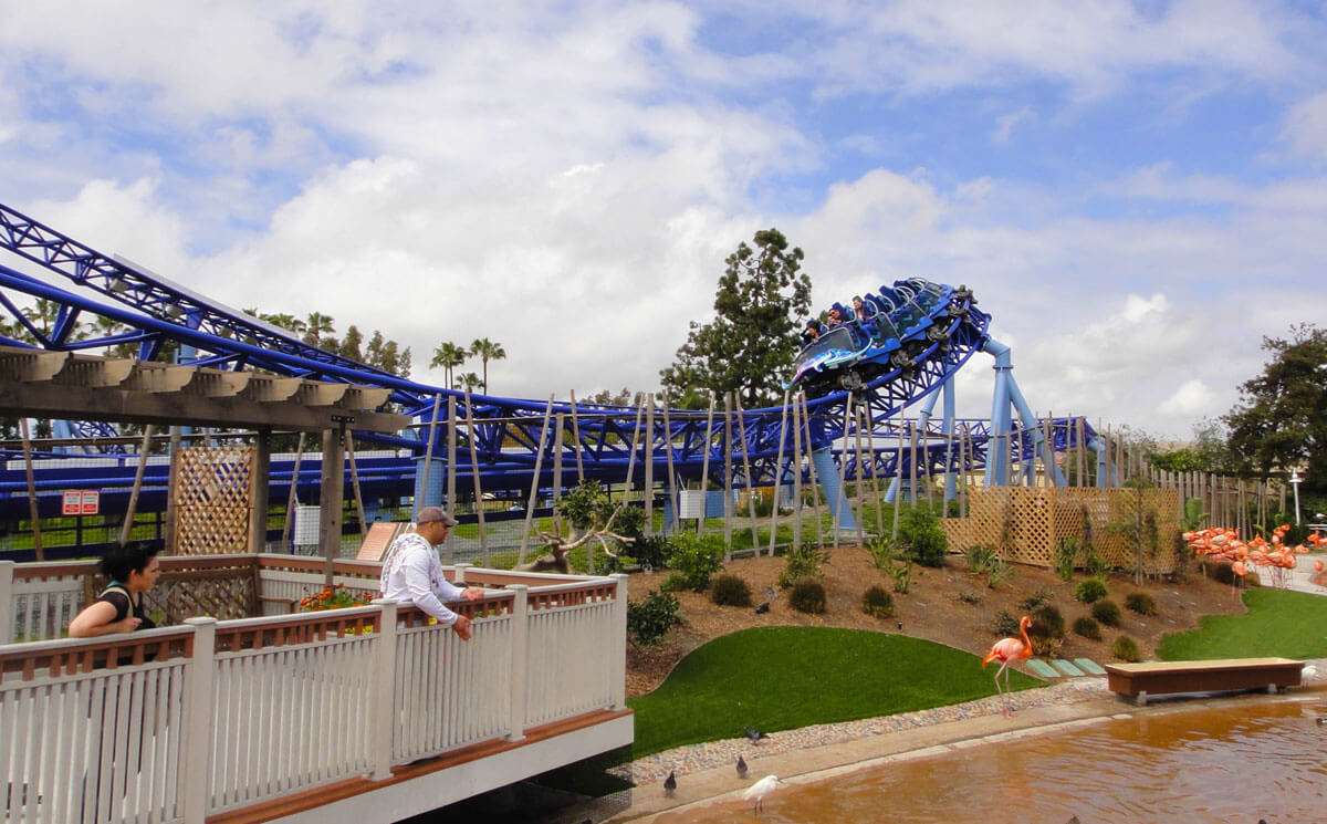 Guide to SeaWorld San Diego Height Requirements