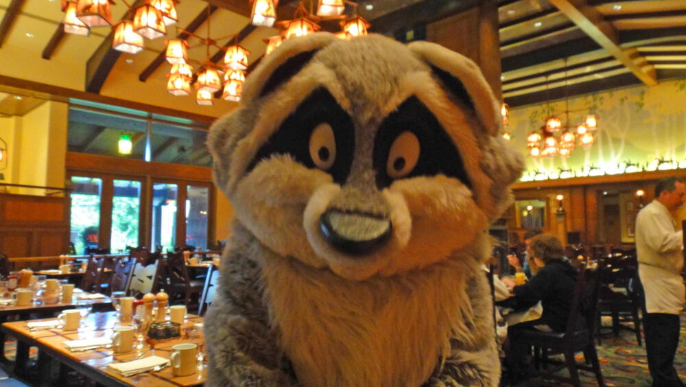 Disneyland Dining Reservations - Meeko from Pochahontas