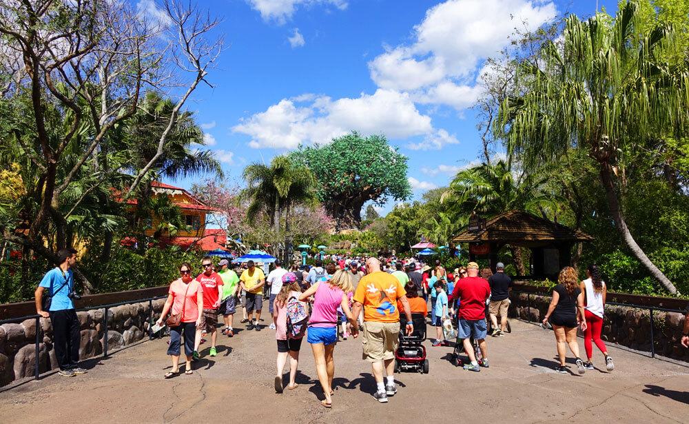 Disney World Touring Plans - Tree of Life - Animal Kingdom Park Plan