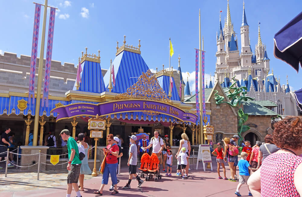 Terrific Disney World Character Meeting Tips