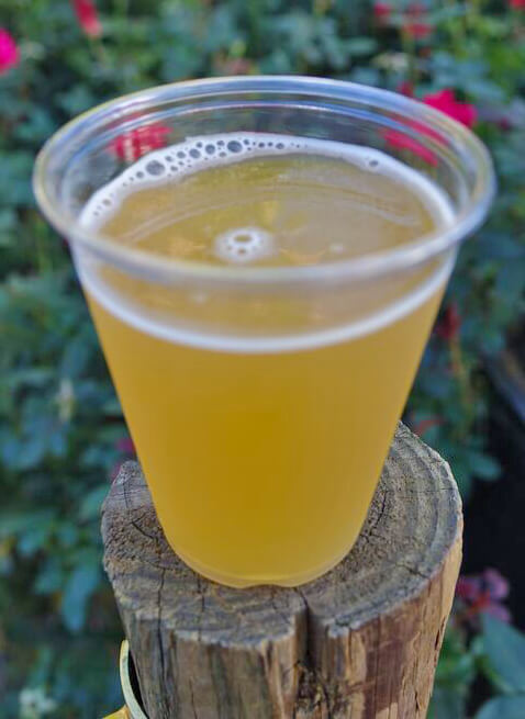 Roundup - SeaWorld Beer Offerings