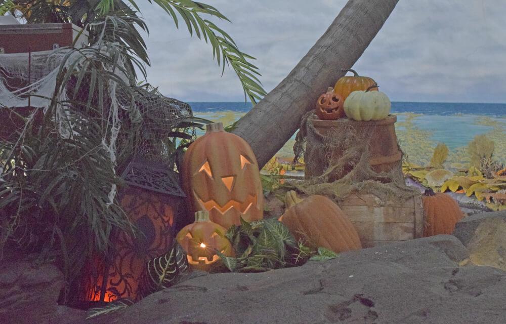 Halloween Spooktacular at SeaWorld San Diego - Shark Encounter decorations