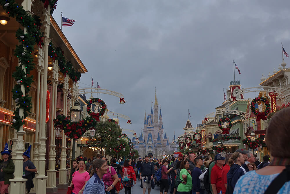 planning for disney world in january