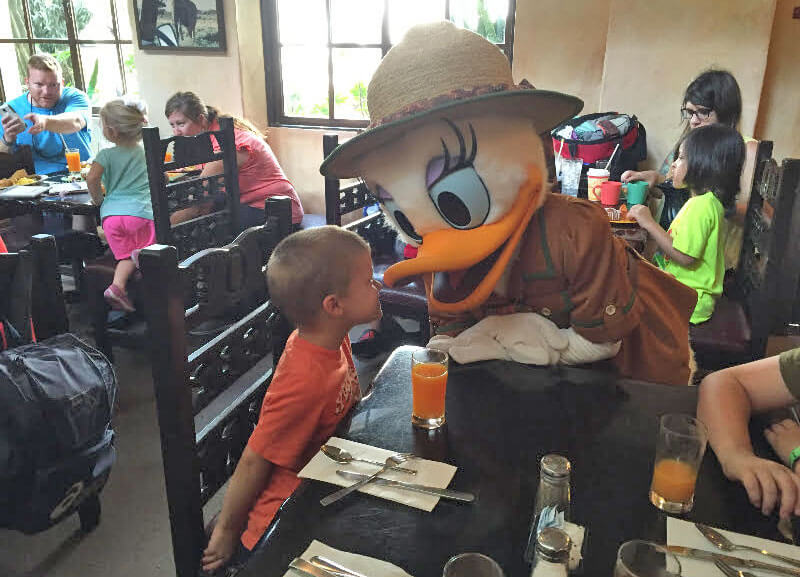 Disney DAS Review - Daisy at the Buffet