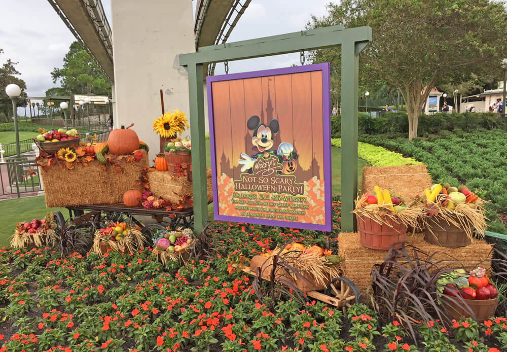 Guide to Mickey's Not So Scary Halloween Party 2018 - Entrance