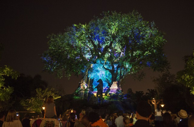 Disney's Animal Kingdom Becomes Full-Day Park Today