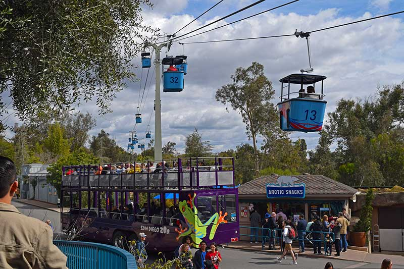 San Diego Zoo Tips - Take the Aerial Tram