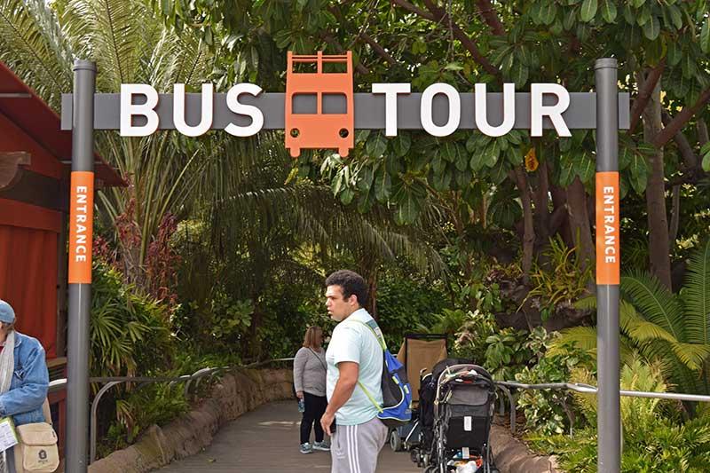 San Diego Zoo Tips - Take a Bus Tour