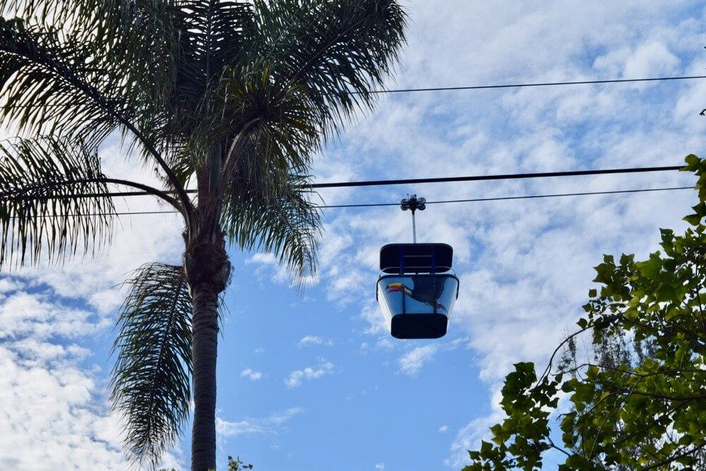 San Diego Zoo Tips - San Diego Zoo Skyway