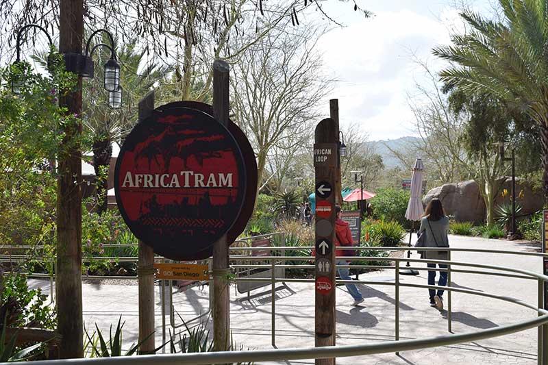 San Diego Zoo Safari Park Tips - African Tram