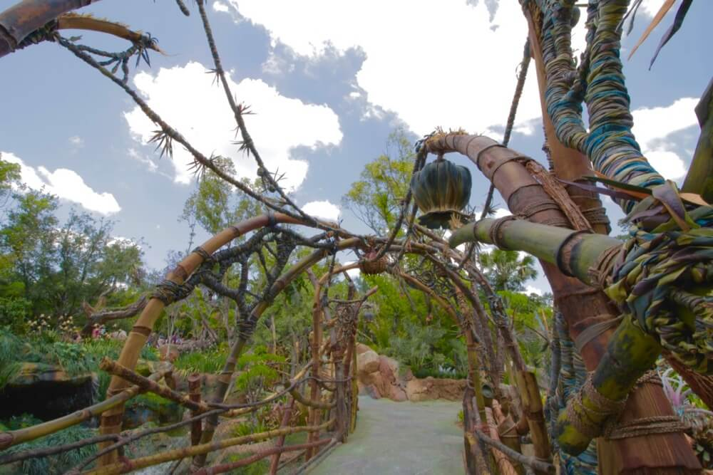 Pandora The World of Avatar - Pandora Native Bridge