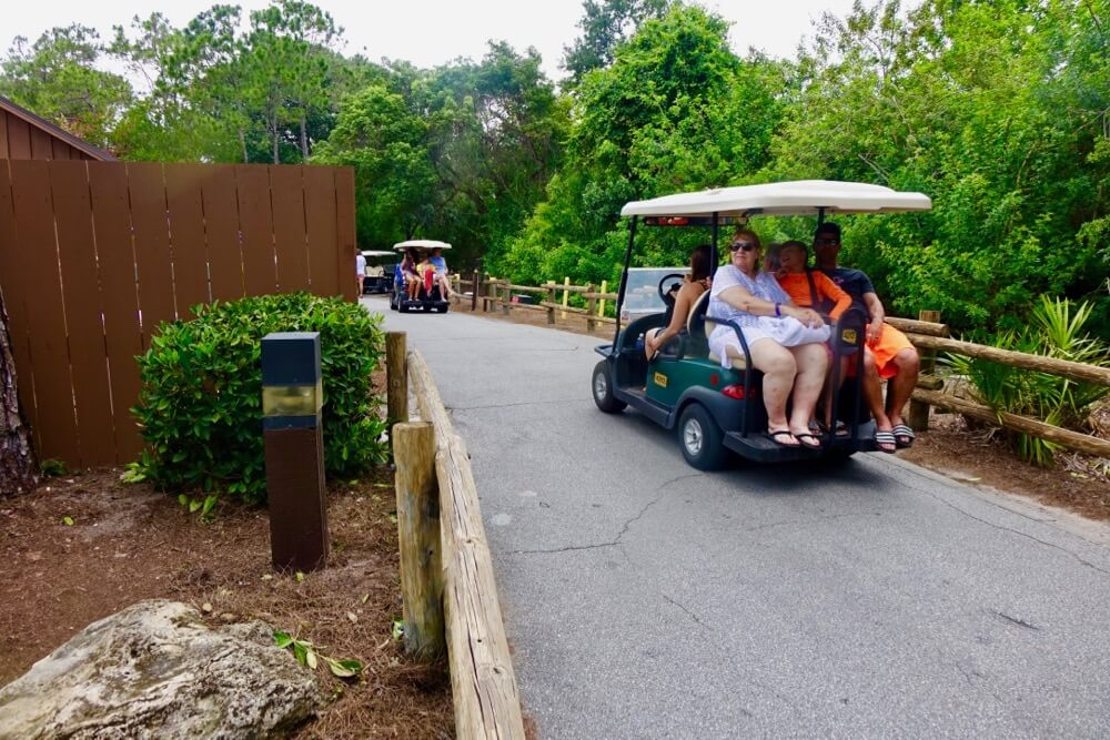 Fort Wilderness at Disney World - Ft Wilderness Golf Carts
