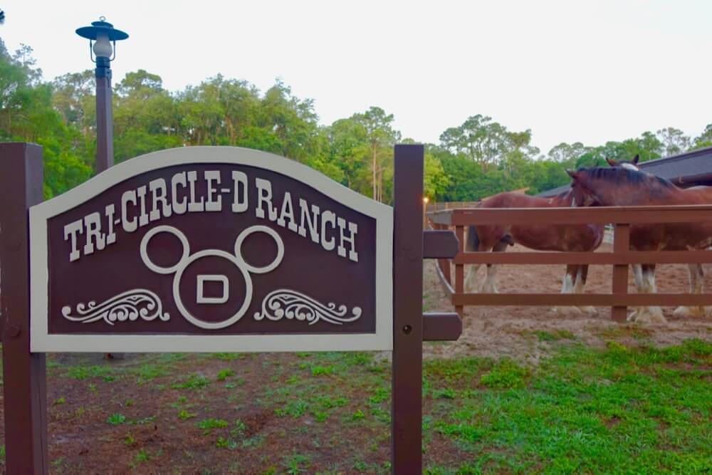 Fort Wilderness at Disney World - Ft. Wilderness tri Circle D Ranch