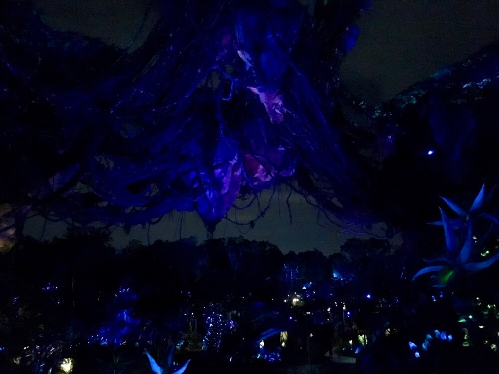 Pandora World Of Avatar - Evening View From Bridge