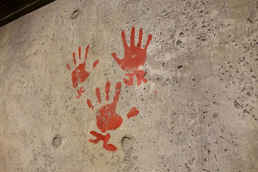 Disney Avatar FastPass - Flight of Passage Handprints