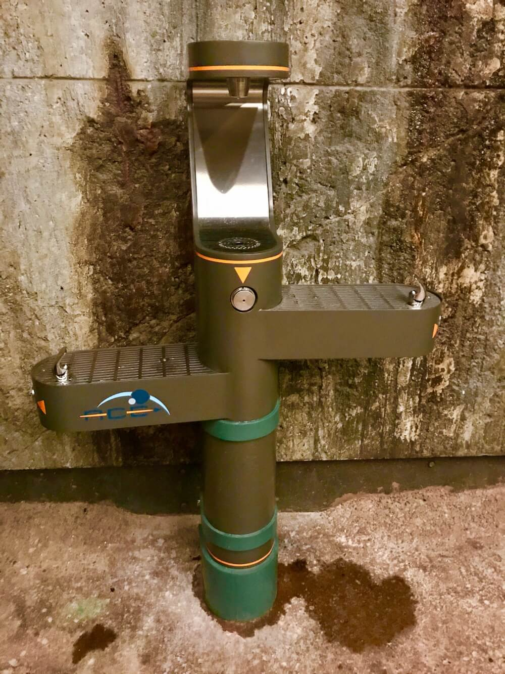 Pandora World of Avatar Fastpass - Flight of Passage Water Fountain