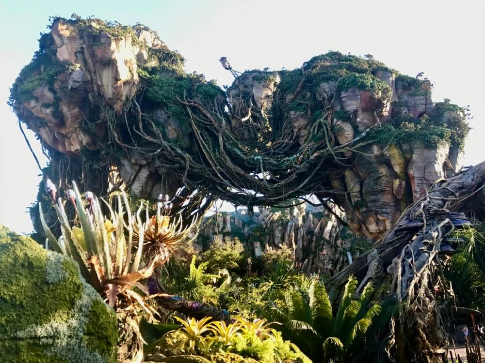 Disney Avatar Tips - Pandora Floating Mountains