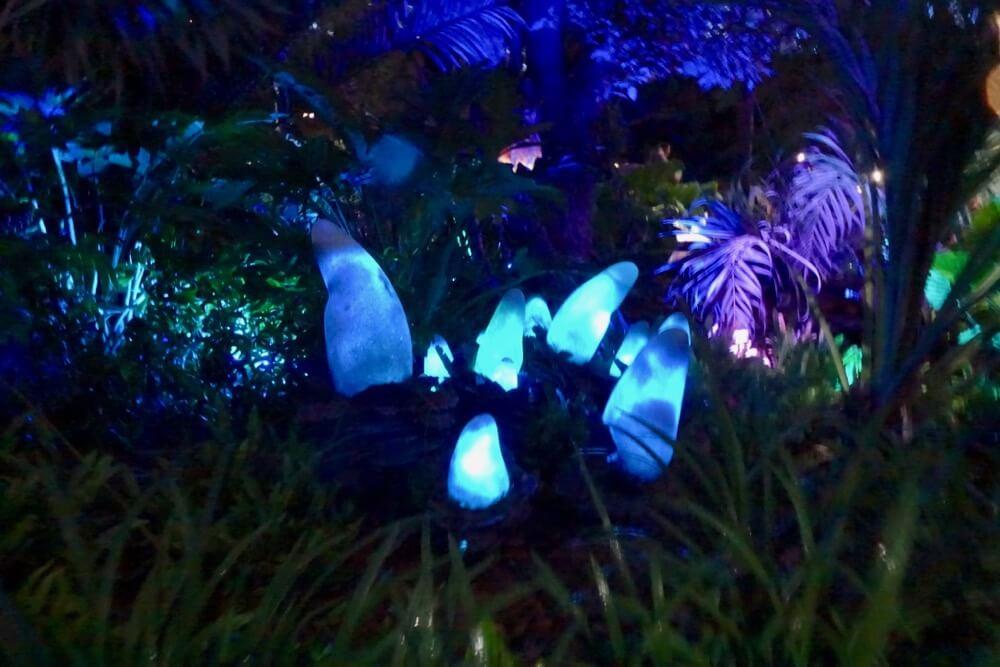 Pandora Planet At Night