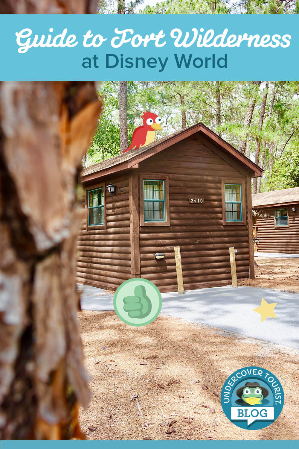 fort-wilderness-pinterest-template