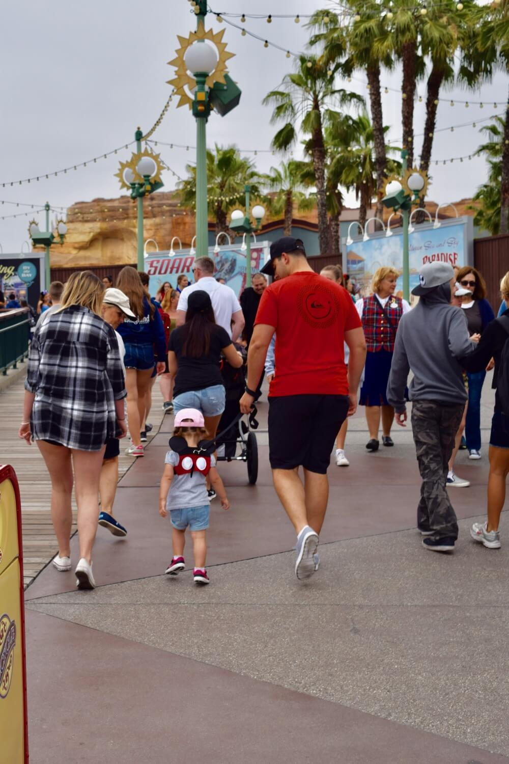 How to Avoid Losing a Child at Disneyland - Disney Califorina Adventure Child on Leash
