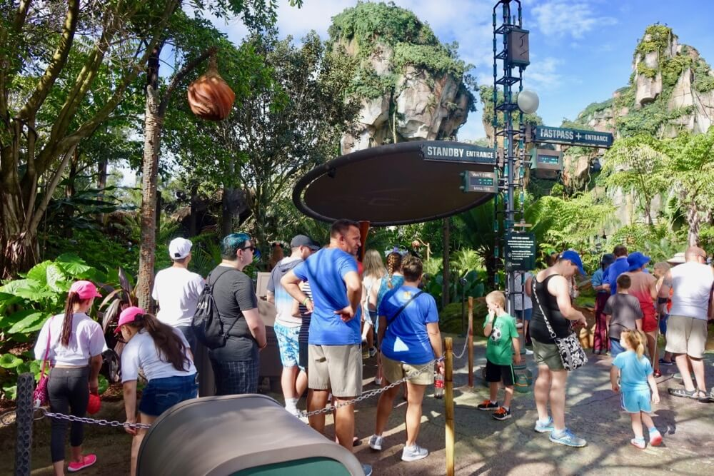 Guide to Disney World Height Requirements - Pandora Avatar Flight of Passage Entrance