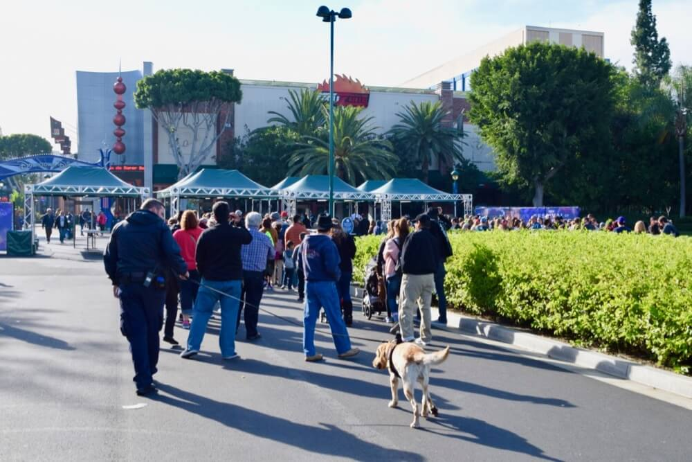 Guide To Downtown Disney at Disneyland - Downtown Disney Security