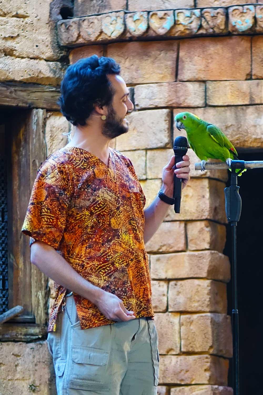 Animal Kingdom Shows - Flights of Wonder