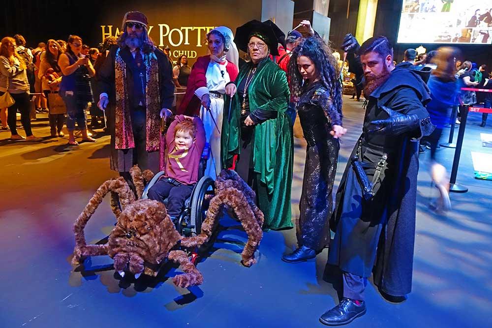 A Celebration of Harry Potter - Aragog