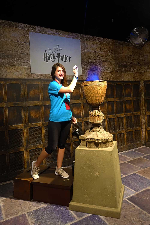 A Celebration of Harry Potter - Goblet of Fire