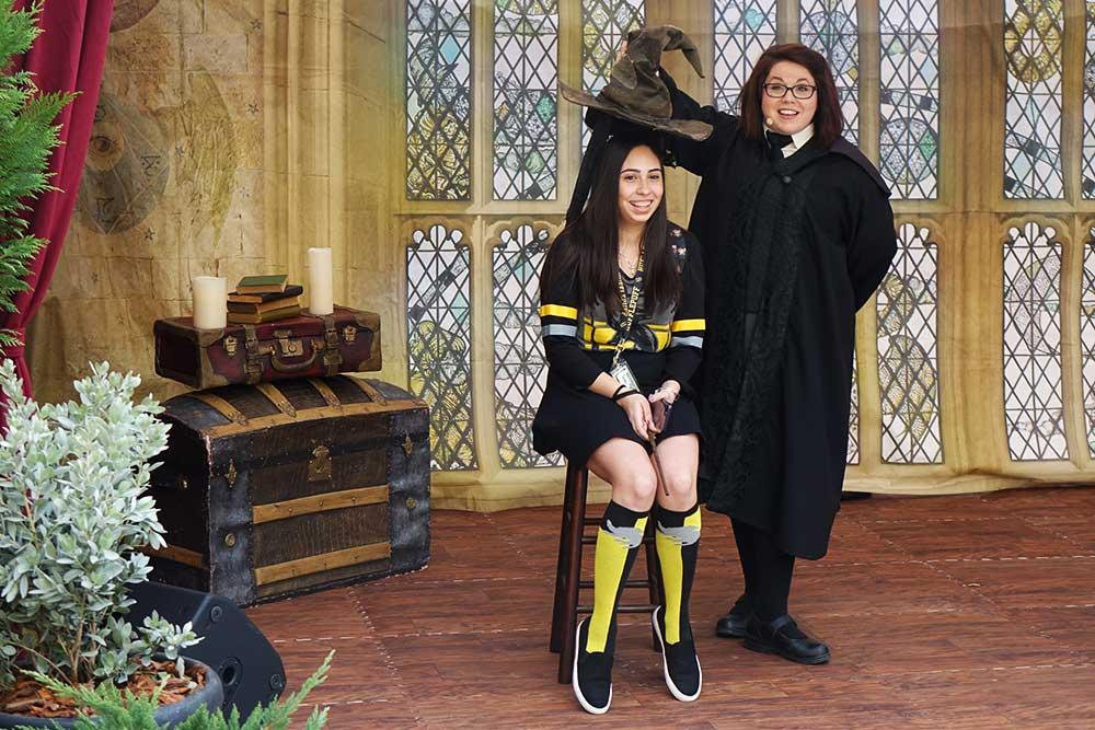 A Celebration of Harry Potter - Sorting Hat