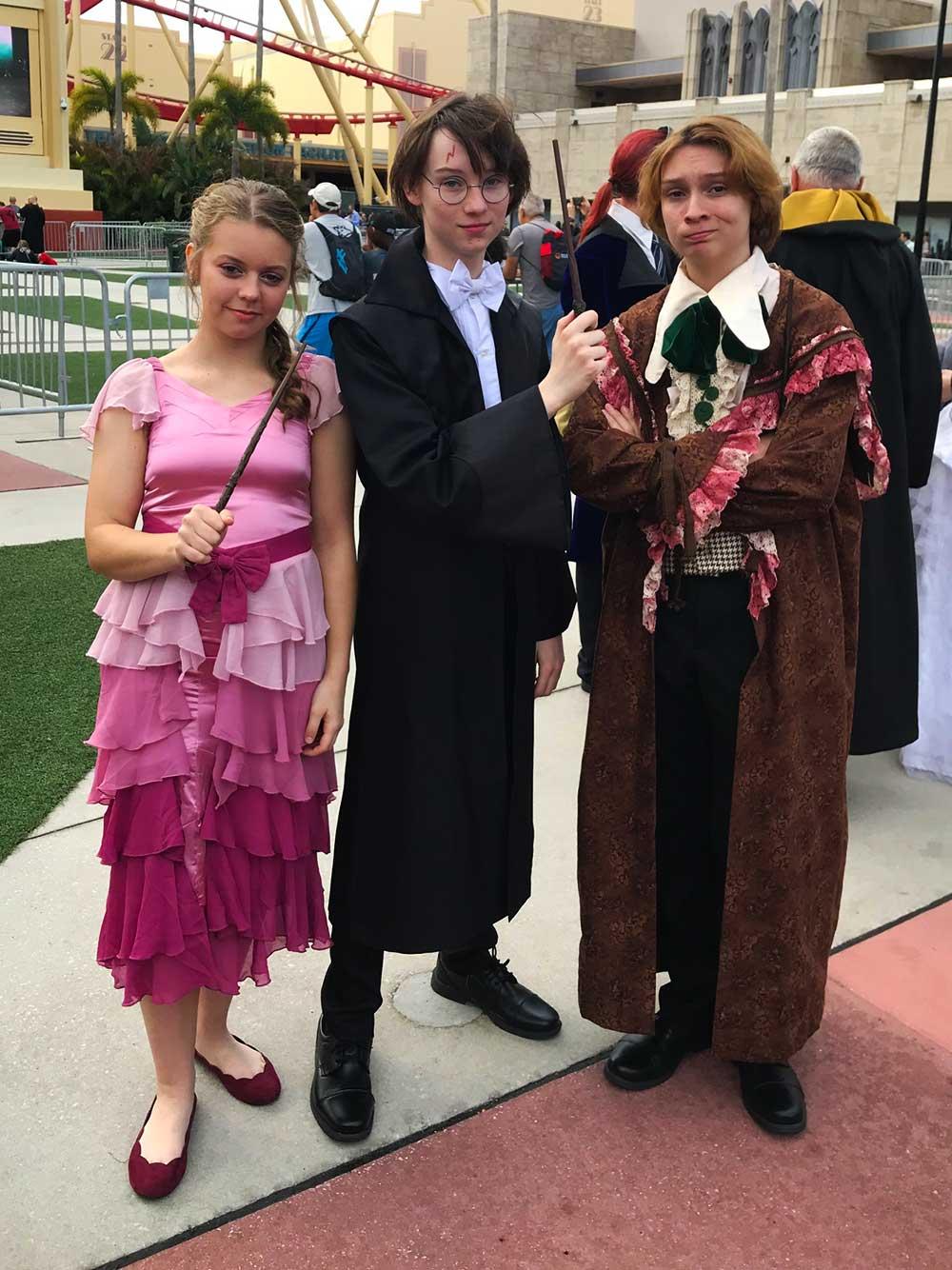 A Celebration of Harry Potter - Wands