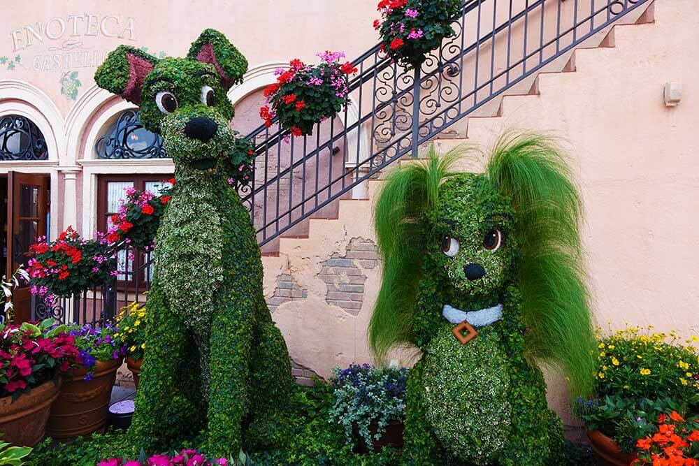 Fun blooms at epcot flower garden 2018 epcot flower and garden 2018 lady and the tramp mightylinksfo