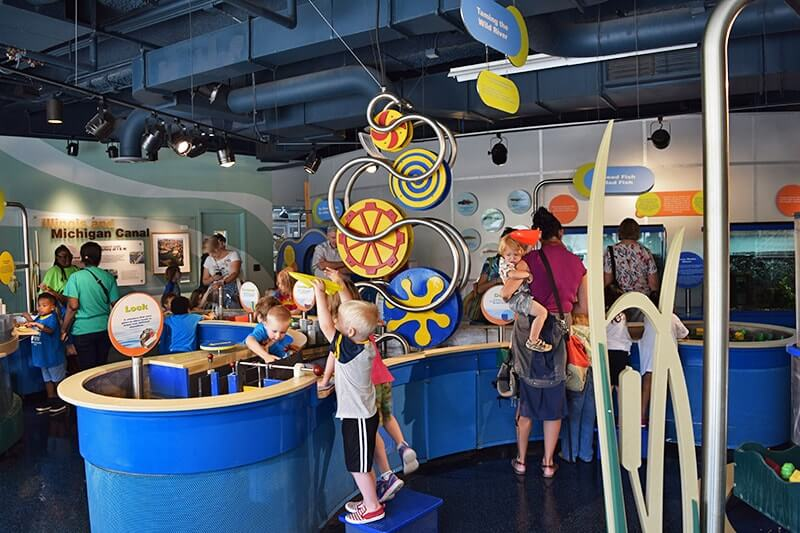 Tips for Visiting Chicago with Kids -Nature Museum