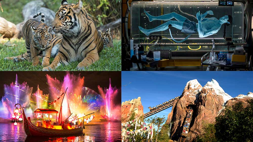 Disney's Animal Kingdom Celebrates Roaring 20th Anniversary