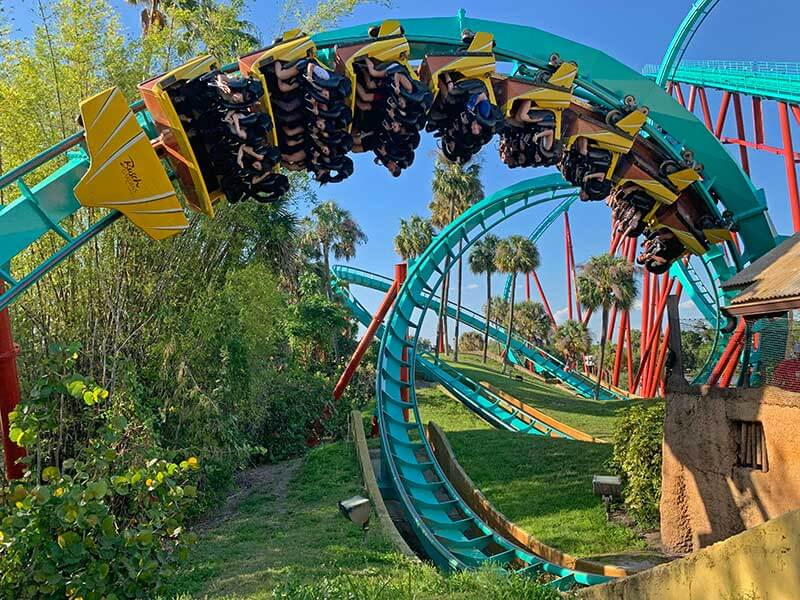 The Frog Family's Wild Guide to Busch Gardens Tampa